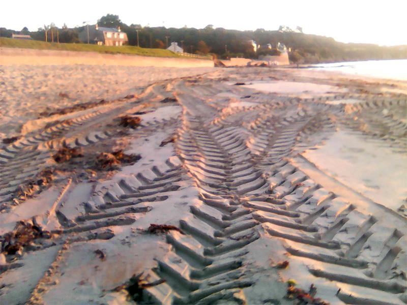 Plage Trez Hir sans laisse de mer